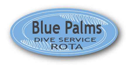 Blue Palmsのロゴ画像